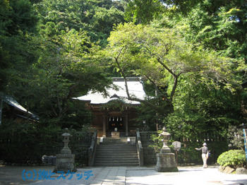 110808御霊神社.jpg