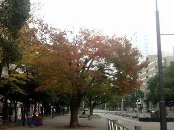 141120大通り公園.jpg